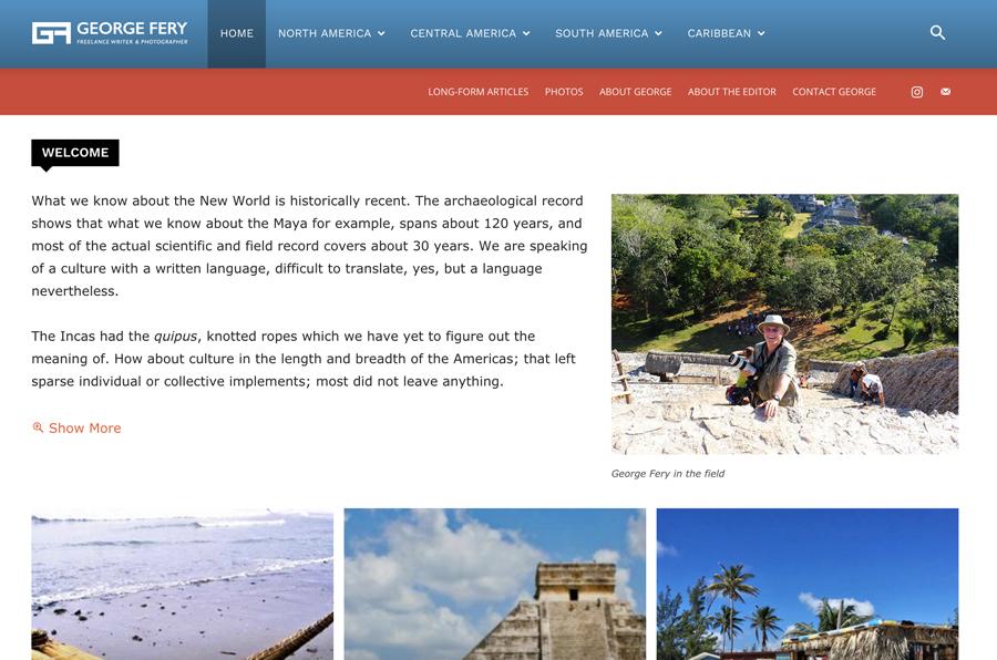 Graphic design, web design, infographics, illustrations in Dallas - Marina Wolf